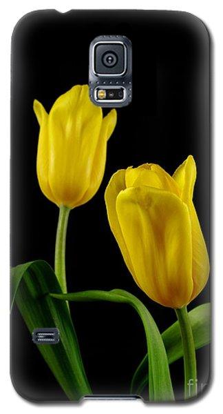 Galaxy S5 Case featuring the photograph Yellow Tulips by Dariusz Gudowicz