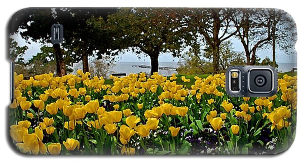 Yellow Tulips Of Fairhope Alabama Galaxy S5 Case
