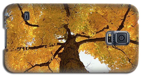 Yellow Up Galaxy S5 Case