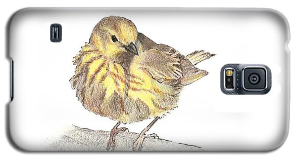 Yellow Warbler Galaxy S5 Case