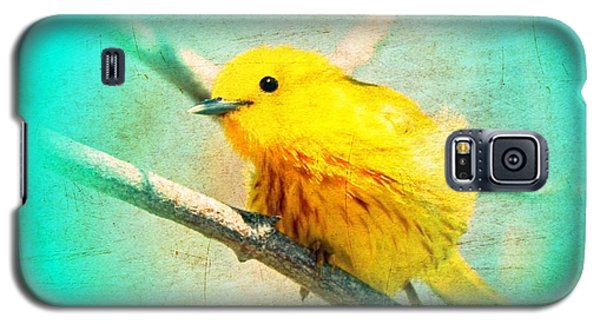 Galaxy S5 Case featuring the photograph Yellow Warbler by John Wills