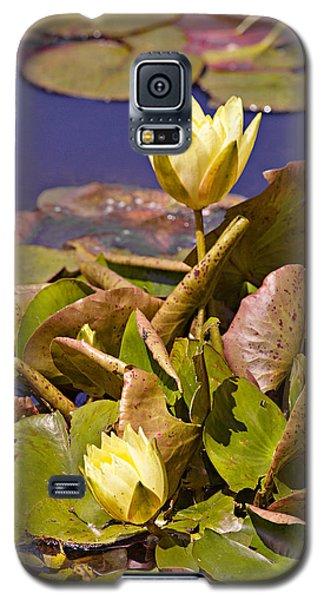 Yellow Water Hyacinth Galaxy S5 Case