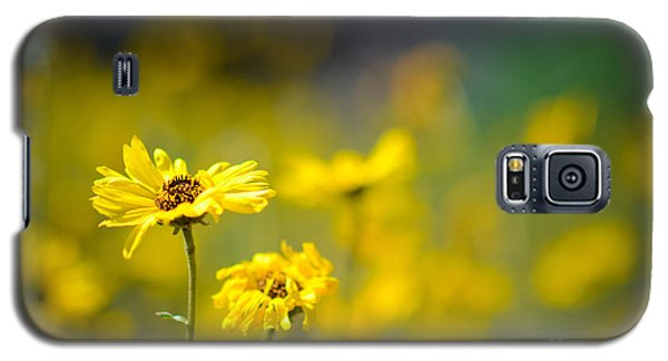 Galaxy S5 Case featuring the photograph Yellow Wild Flowers by Kelly Wade