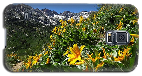 Yellow Wildflowers Galaxy S5 Case by Alan Socolik