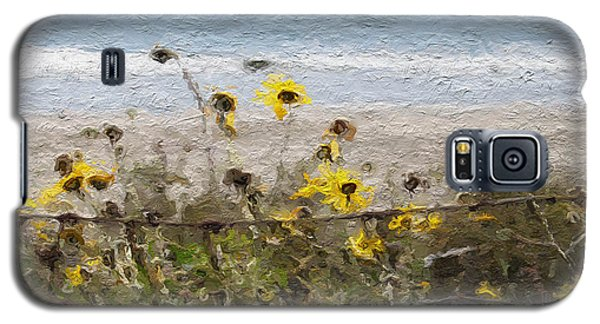 Daisy Galaxy S5 Case - Yellow Wildflowers- Art By Linda Woods by Linda Woods