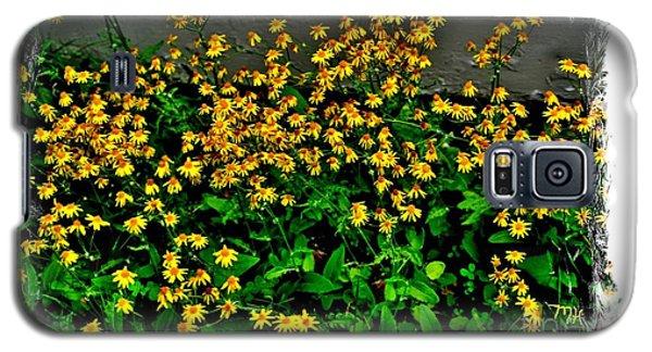 Yellow Wildflowers Galaxy S5 Case by Marsha Heiken