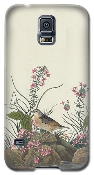 Yellow-winged Sparrow Galaxy S5 Case by Dreyer Wildlife Print Collections