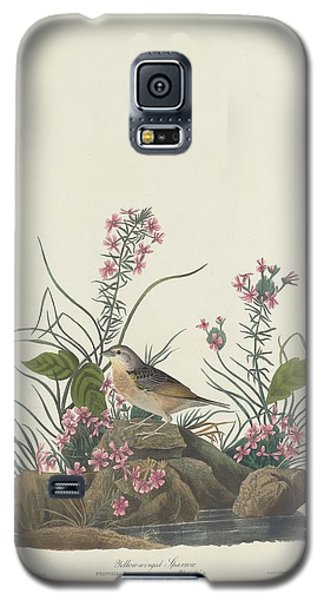 Yellow-winged Sparrow Galaxy S5 Case by Rob Dreyer