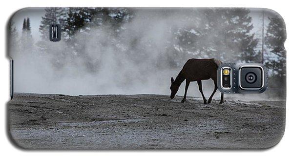 Yellowstone 5456 Galaxy S5 Case