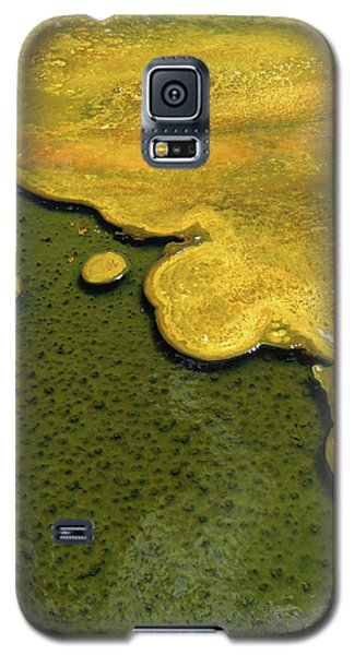 Yellowstone Art. Yellow And Green Galaxy S5 Case by Ausra Huntington nee Paulauskaite