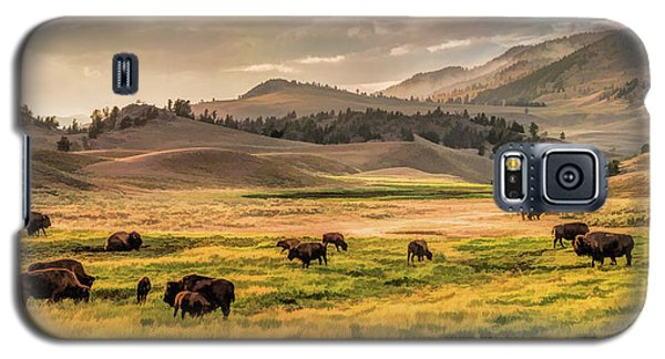 Yellowstone National Park Lamar Valley Bison Grazing Galaxy S5 Case
