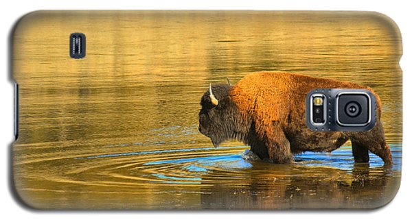 Galaxy S5 Case featuring the photograph Yellowstone Solo Swimmer by Adam Jewell
