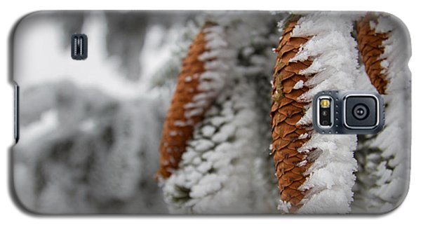 Yep, It's Winter Galaxy S5 Case