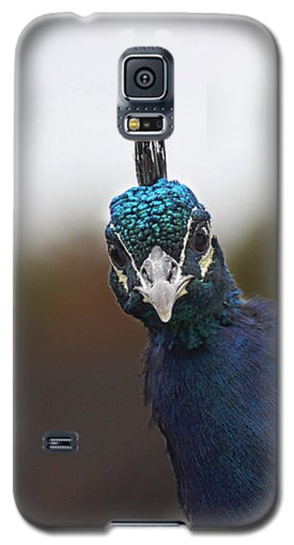 Galaxy S5 Case featuring the photograph Yes? by RKAB Works