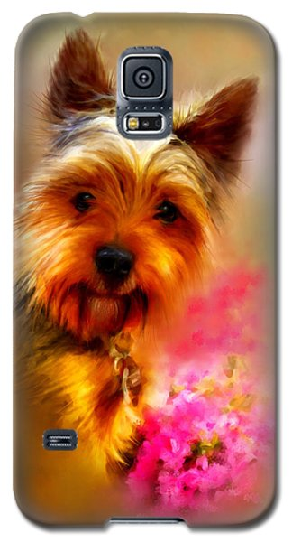 Yorkie Portrait Galaxy S5 Case