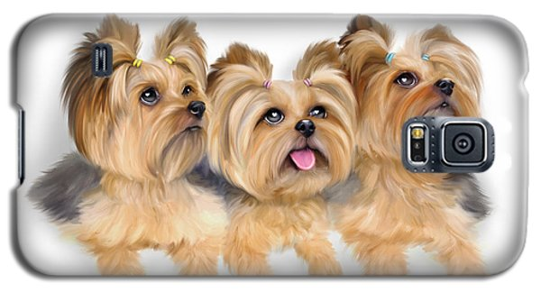 Yorkie Trio Galaxy S5 Case