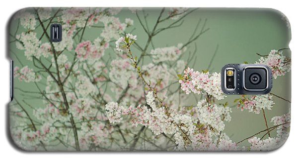 Yoshino Cherries Jade Galaxy S5 Case