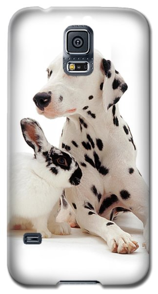 You Knocked My Spots Off Galaxy S5 Case