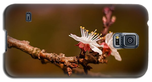 Galaxy S5 Case featuring the photograph You Make Me Blossom by Tim Nichols