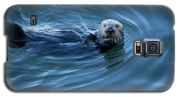 Galaxy S5 Case featuring the photograph You Otter Take My Picture, Lady by Lora Lee Chapman