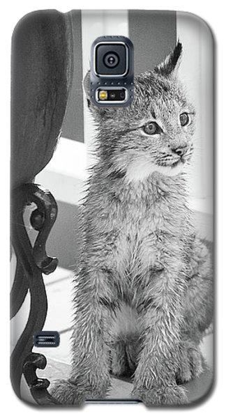 You Say Somethin Galaxy S5 Case