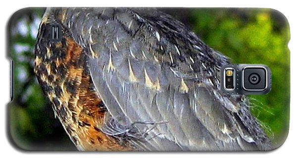 Young American Robin Galaxy S5 Case