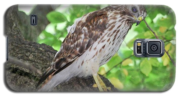 Young Red Shouldered Galaxy S5 Case