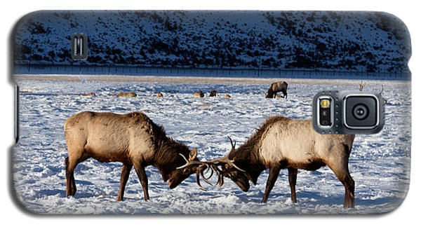 Galaxy S5 Case featuring the photograph Young Bull Elk In Jackson  Hole In Wyoming by Carol M Highsmith
