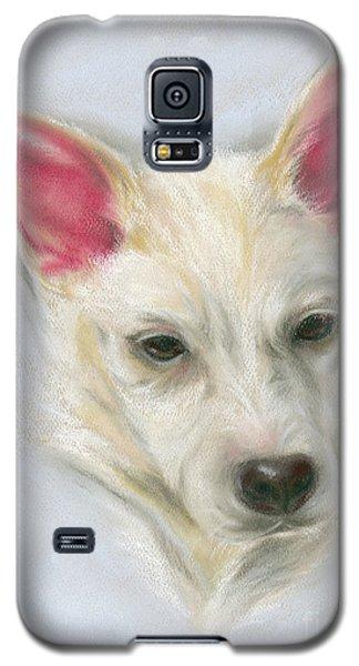 Young Carolina Dog Portrait 2 Galaxy S5 Case
