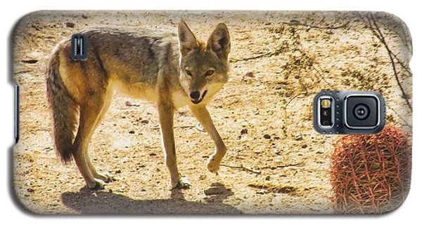 Young Coyote And Cactus Galaxy S5 Case