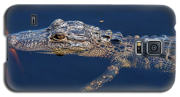 Galaxy S5 Case featuring the photograph Young Gator 1 by Arthur Dodd