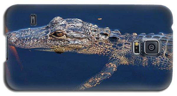 Young Gator 1 Galaxy S5 Case by Arthur Dodd
