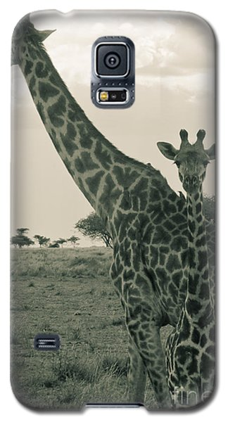 Young Giraffe With Mom In Sepia Galaxy S5 Case by Darcy Michaelchuk
