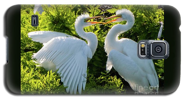 Young Great Egrets Playing Galaxy S5 Case