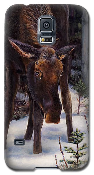Galaxy S5 Case featuring the painting Young Moose And Pussy Willows Springtime In Alaska Wildlife Painting by Karen Whitworth