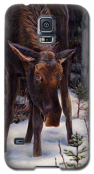 Young Moose And Snowy Forest Springtime In Alaska Wildlife Home Decor Painting Galaxy S5 Case