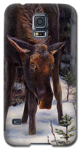 Young Moose And Pussy Willows Springtime In Alaska Wildlife Painting Galaxy S5 Case
