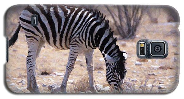 Young Plains Zebra Galaxy S5 Case by Ernie Echols