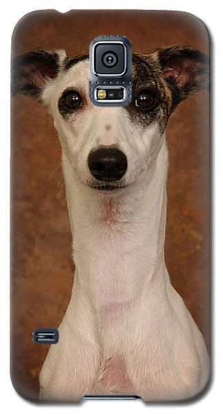 Galaxy S5 Case featuring the photograph Young Whippet by Greg Mimbs