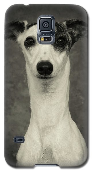 Galaxy S5 Case featuring the photograph Young Whippet In Black And White by Greg and Chrystal Mimbs