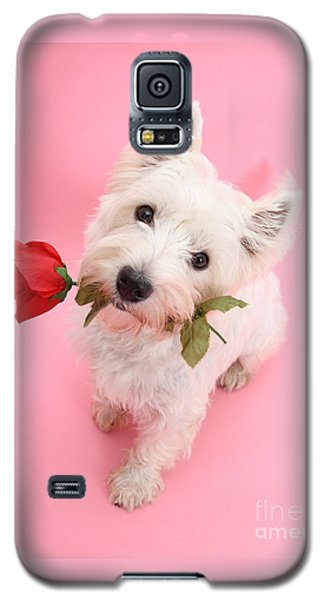 Your Valentine Every Day Galaxy S5 Case