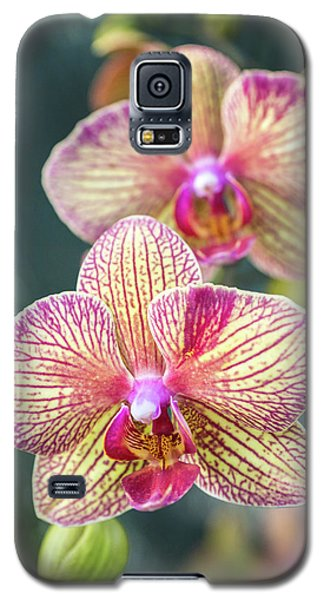 Galaxy S5 Case featuring the photograph You're So Vain by Bill Pevlor