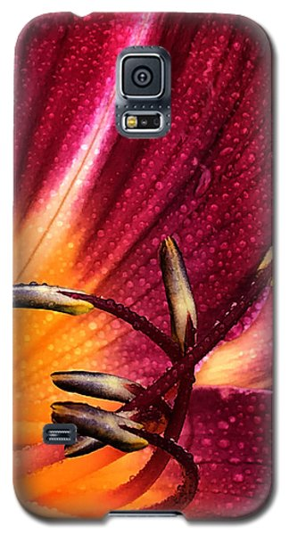 Youthful Joyride Galaxy S5 Case