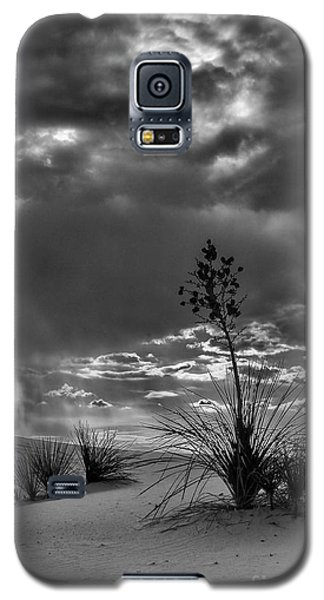 Yucca At Sunset Galaxy S5 Case