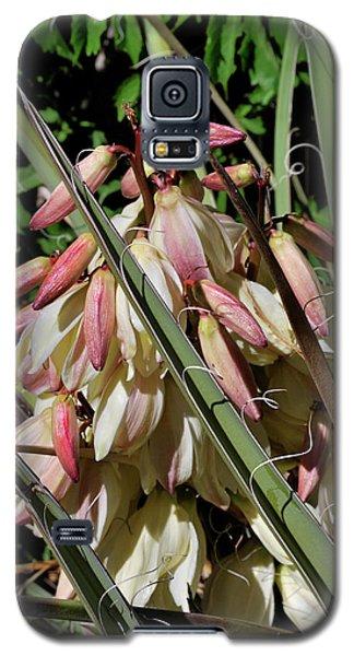 Yucca Bloom I Galaxy S5 Case