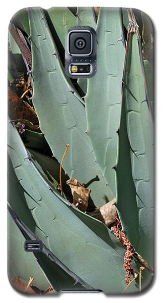 Yucca Leaves Galaxy S5 Case