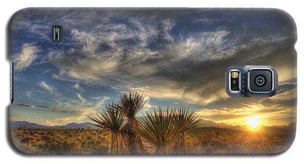 Yucca Sunset Galaxy S5 Case
