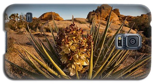 Yucca Bloom Galaxy S5 Case