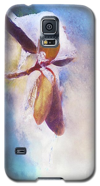 Winter Abstract - Snow And Ice On Rhododendron Leaves Galaxy S5 Case