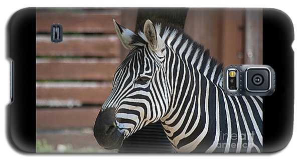 Zebra 20120718_150a Galaxy S5 Case